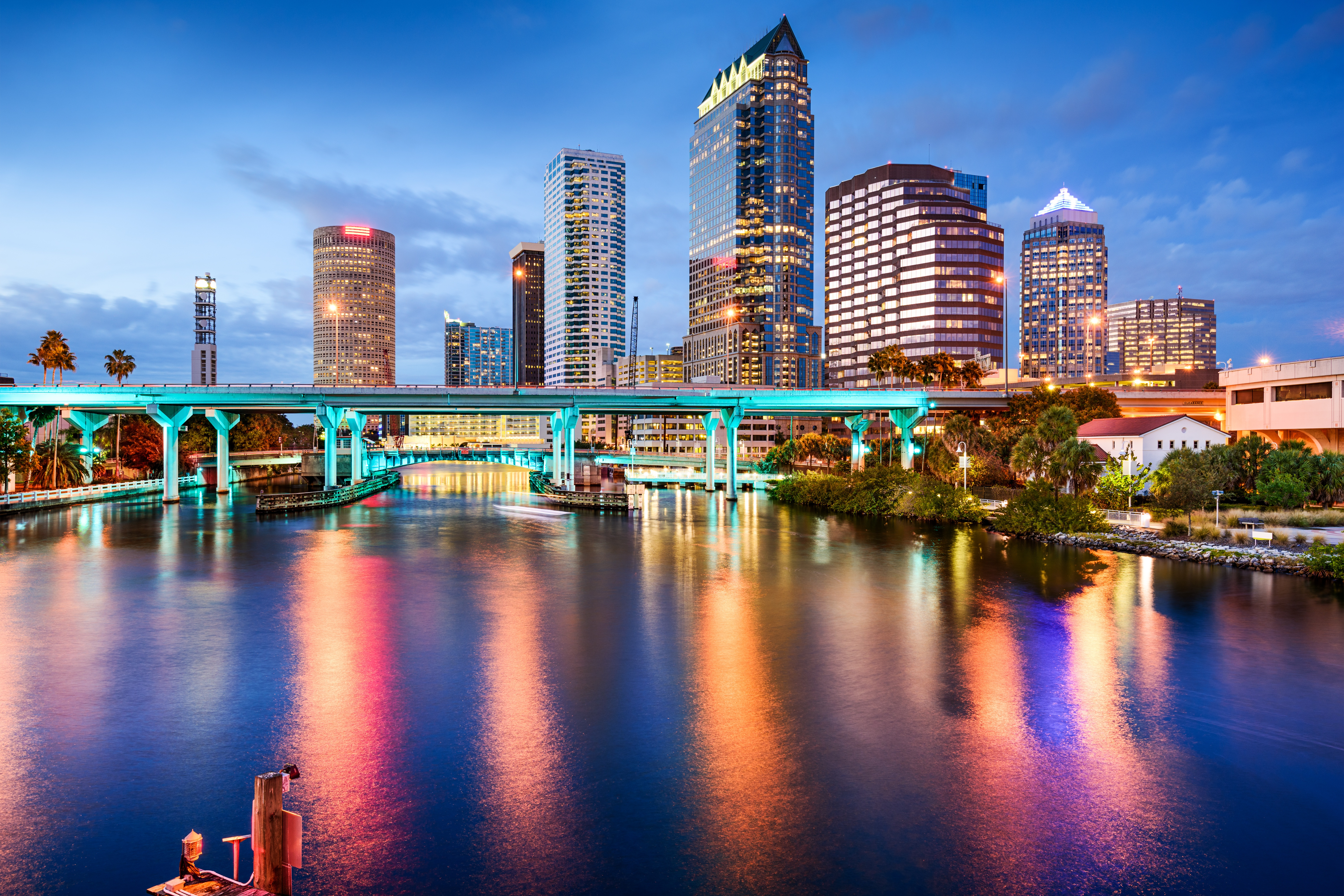 tampa hoa management